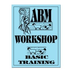 ABM Workshop: Basic Training (Workbook)